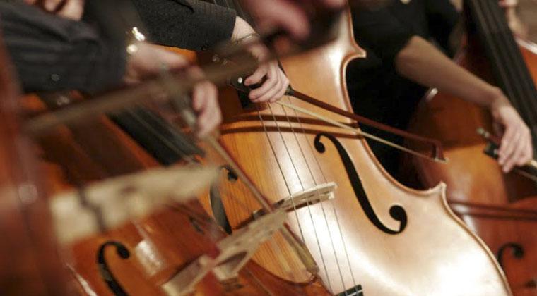 杭州大提琴老师