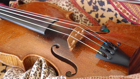 学习小提琴的好处