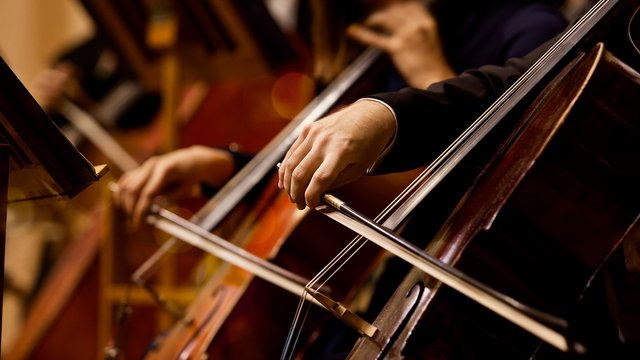 小提琴和钢琴哪个更适合成人自学?