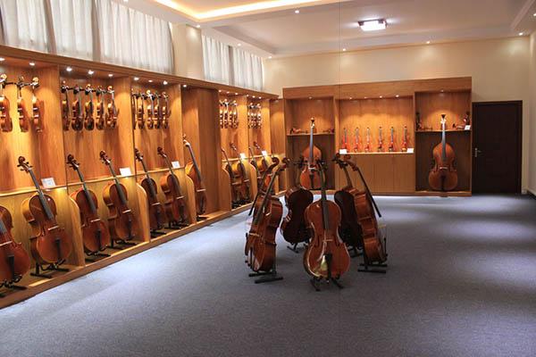 选购小提琴时应该注意些什么?