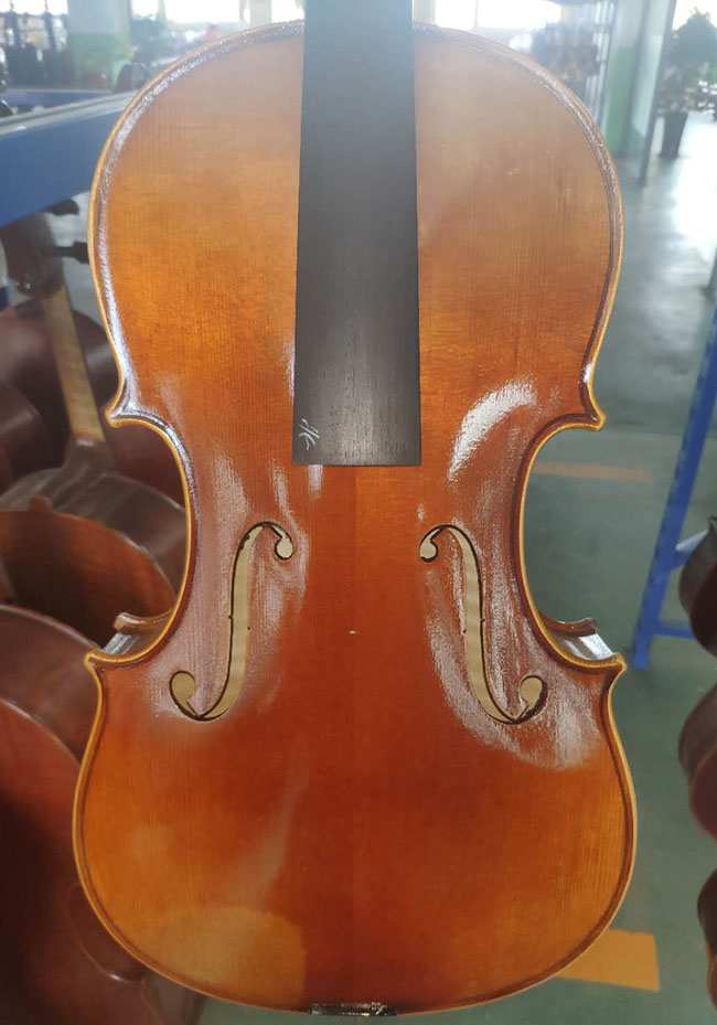 川料中提琴