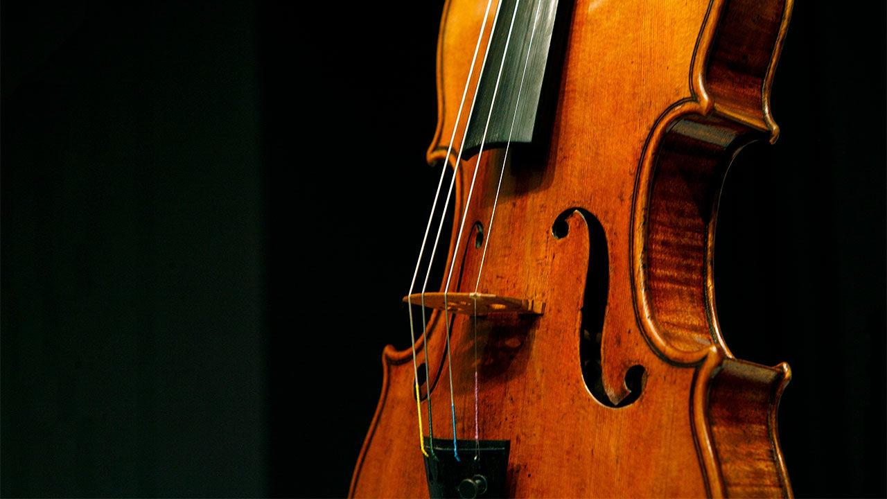 学小提琴将来能从事哪些工作?