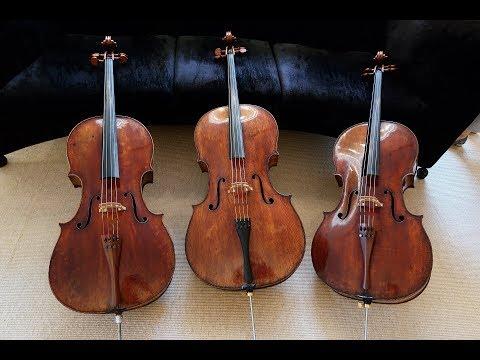大连小提琴