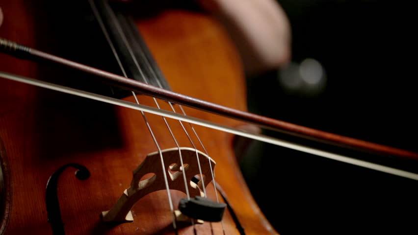 重庆大提琴老师一对一教学,提琴培训学校