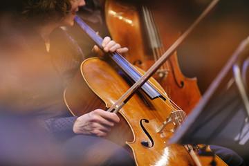 教你如何更换大提琴弦