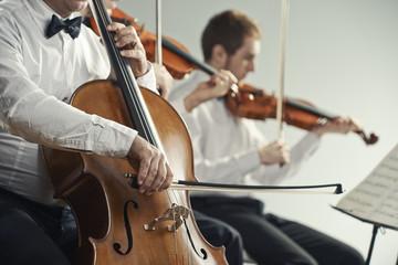 肌肉记忆对提琴演奏家的重要性