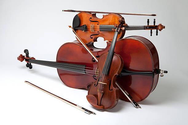 专业制琴师:快捷可靠的小提琴选购方法
