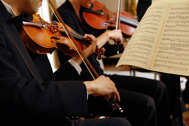 初学者该买廉价的还是优质的小提琴