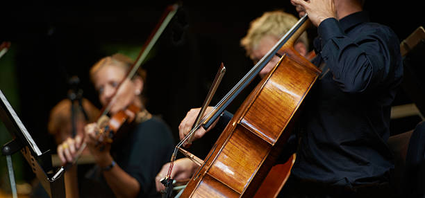是什么让大提琴如此特别?