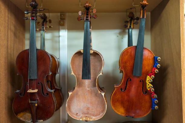 关于提琴木料的常见问题