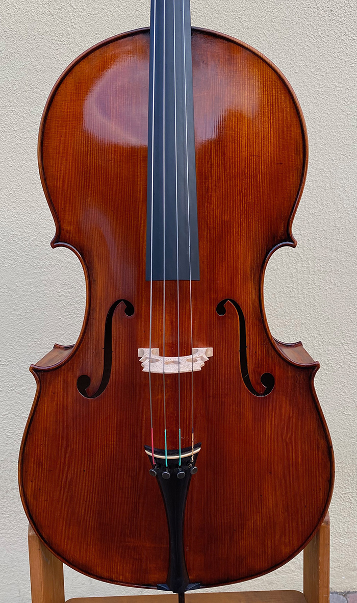 睡美人宽体大提琴