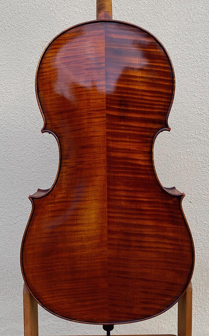 宽体大提琴