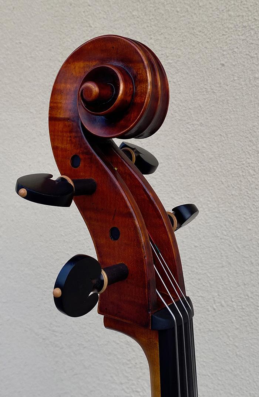 蒙式大提琴