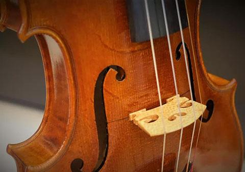 提琴木材的鸡爪纹