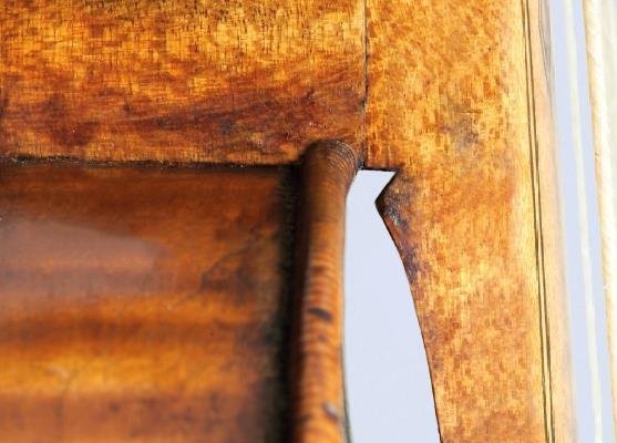 图4 Girolamo Amati颈托,经过数字修改以模拟将颈后跟嵌入顶部,但不是肋骨